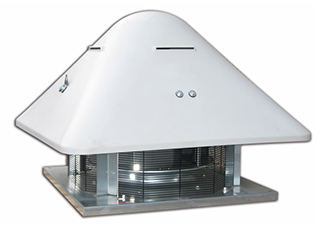 roof cm atex